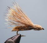 Letort-Hopper