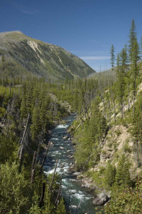 North Fork of the Blackfoot