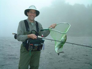 In the net: an American Shad