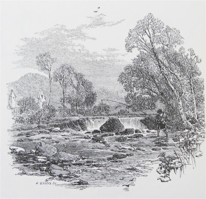 Historical Fly Fishing Illustration
