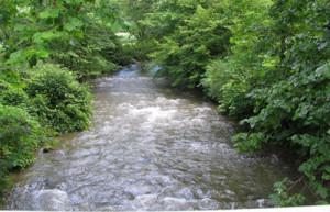 The Battenkill River