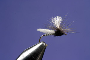 Making A Caulk Midge Fly: Step 8