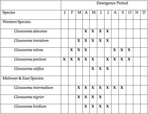 Saddle Case Caddis Larvae Hatch Chart