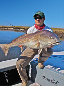 Large Redfish (aka Bull Red)