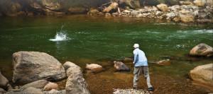 Pluma River