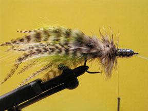 Halibut Fly - Step 7
