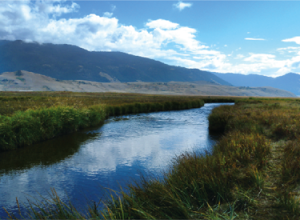 Flat Creek Near Jackson Hole, Wyoming