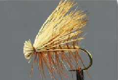 Tan Elk Hair Caddis Fly