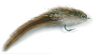 Kings Kinky Muddler Fly