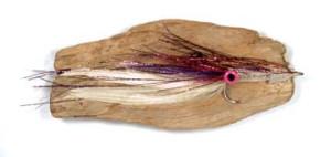 Large Squid