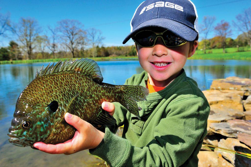 Little boy holding a Panfish