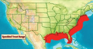 Speckled Trout Range Map