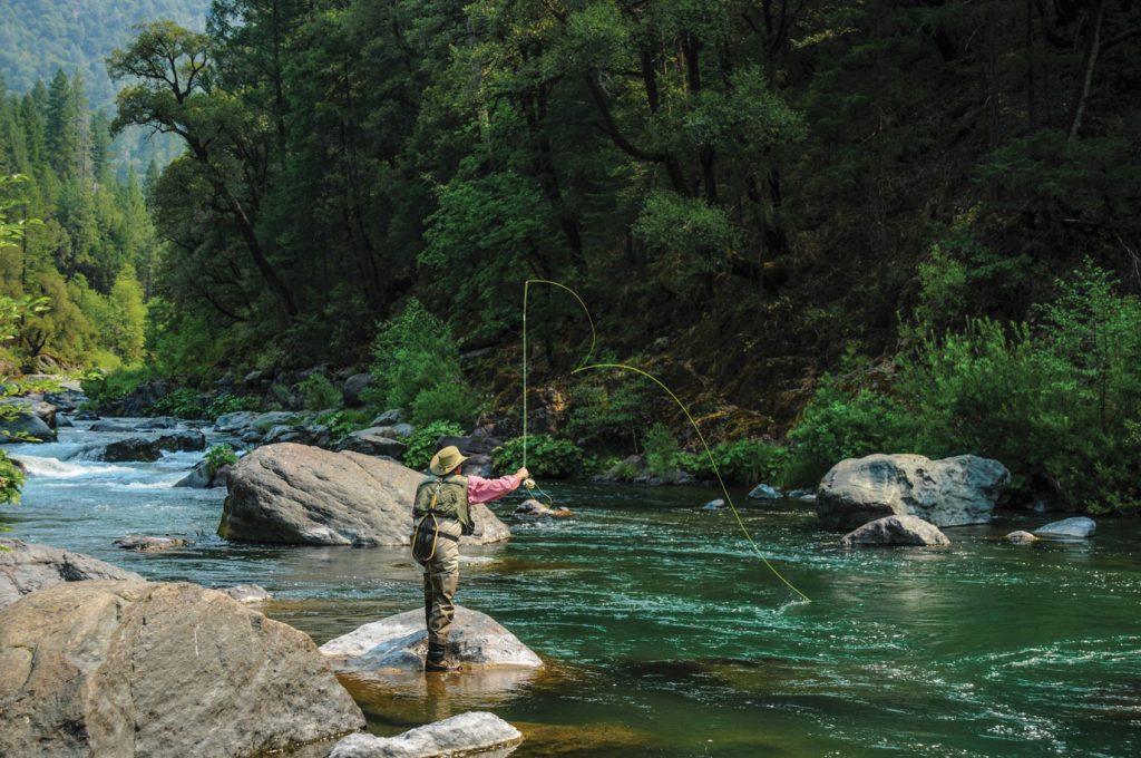 Man fly fishing for trout