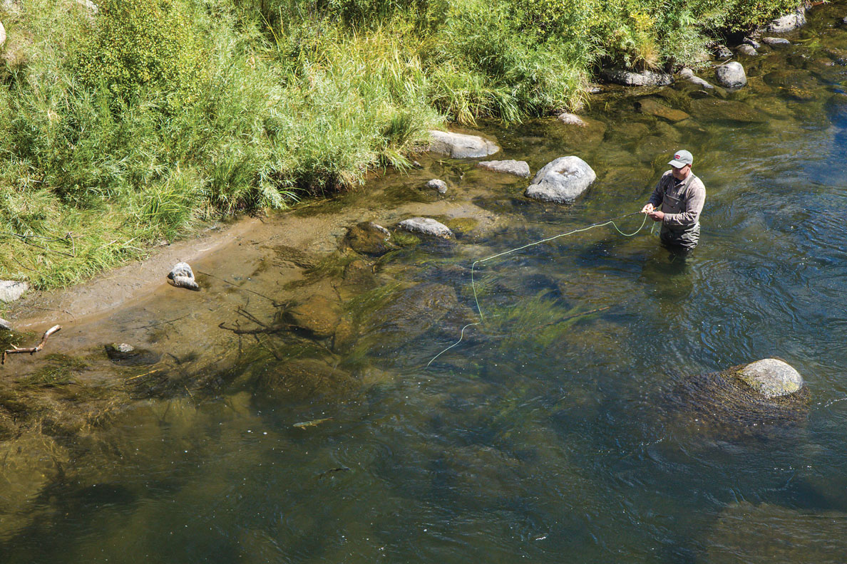 upstream-cast-to-fish_angus-drummond