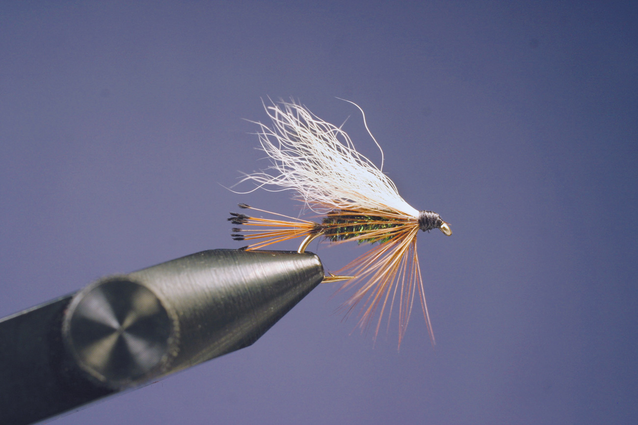 Image result for The Wet Fly Swing